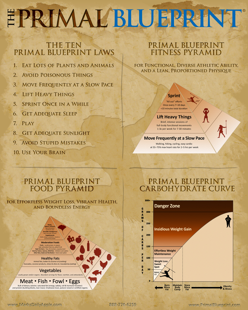 Contest design the next primal blueprint poster for cash prize primal blueprint poster malvernweather Choice Image