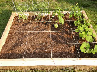 DIY Square Foot Gardening In 10 Steps