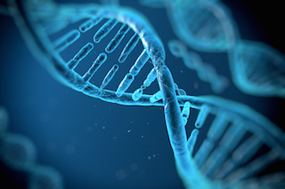 Can getting your dna tested help you optimize your diet and can getting your dna tested help you optimize your diet and training marks daily apple malvernweather Image collections