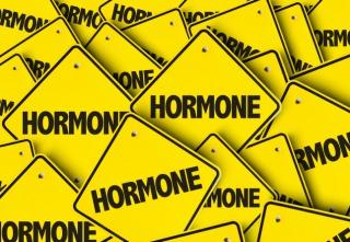Inline_DM_Normalizing_Hormones_10.02.17